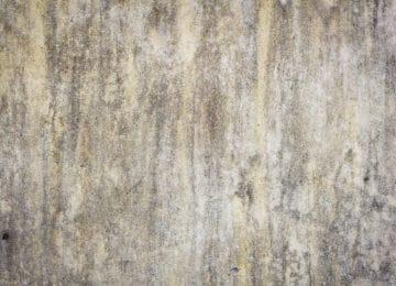 cena odstraňování plísně a řas ze zateplených fasád Praha 8