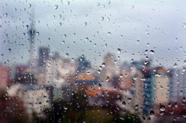 Čmouha na okně