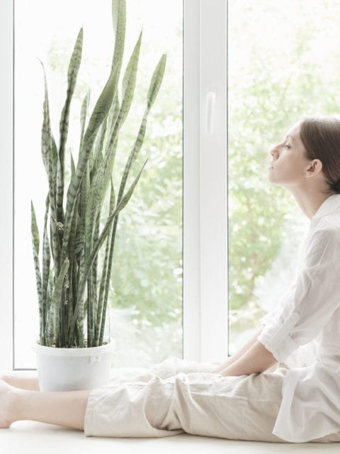 mytí oken v relaxačním centru
